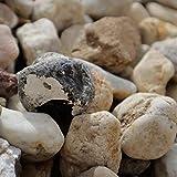 Holtaz Garten-Ziersteine, Kies für Garten Deko, Dekoration Steine für Gartentöpfe Blumentopf Kieselsteine Edelsplitt in Big Bag Gelber Kies 16-32mm 500kg