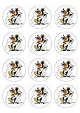 12 Muffinaufleger ca. 6 cm zum selbst ausscheiden, Cupcakes Muffinsbild Geburtstag Motiv: Yakari , Fondant 0521x