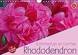 Rhododendron Schönheiten im Garten (Wandkalender 2021 DIN A4 quer)