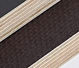 15mm Sperrgut Multiplex Zuschnitt Siebdruckplatten Multiplexplatten Zuschnitte Melaminbeschichtet Birke Bodenplatte Holz Braun (Breite 60 cm, Länge 100 cm)