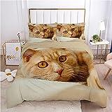 QDoodePoyer Bettwäsche-Sets 3 teilig Mikrofaser Süß Tier Braun Katze Bettbezug Set 260x240cm Bettbezug mit Reißverschluss und 2 Kopfkissenbezug 80x80cm Weiche Bettwäscheset