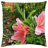 Kissenbezug Azalee Blume Rhododendron Japanische Gartenblumen