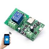 EACHEN Smart Wifi Schalter Relais Inching/selbstverriegelung Schaltermodul DIY Smart Home Garagentor Fernbedienung DC 5-32V AC90-260V Ewelink-App Kompatibel mit Alexa Google Zuhause Nest IFTTT (DC1)