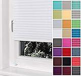 Home-Vision® Premium Plissee Faltrollo ohne Bohren mit Klemmträger / -fix (Weiß, B80cm x H150cm) Blickdicht Sonnenschutz Jalousie für Fenster & Tür