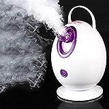 DJG Facial Steamer, Rice Sprayer Verdampfer Haut SPA Schönheit Instrument Maschine, Whitening Moisturizing Peeling Hand Steaming Gesicht Machine (Thermal Spray),Lila