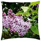 N\A Kissenbezug Flieder Syringa Zierstrauch Pflanze Buschblüte