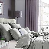 Ruikasi Bettbezug 140 x 200 cm, grau, Bettwäsche für Einzelbett, mit Reißverschluss, Bettbezug aus Mikrofaser mit 1 Kissenbezug 65 x 65 cm
