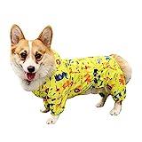 Regenmantel für Hunde,Drucken Hundejacke für Hunde, Wasserdicht Hundemantel Regenjacke wasserdicht mit Kapuze Bauchschutz für kleine mitelgroße große Hunderegenman,XL