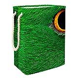 Wäschekorb mit Papageien-Motiv, quadratisch, mit Seilgriffen, wasserdicht, für Badezimmer, Spielzeug, Kleidung