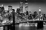 New York Poster Lights World Trade Center/Brooklyn Bridge (91,5cm x 61cm)