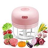 Elektrisch Zerkleinerer Küche, Afaneep Mini Zwiebelschneider 280ML mit 4 scharfen Klingen Küchenmaschine USB-Aufladung Aid Food Processor Chopper für Fleisch, Gemüse, Babynahrung