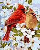 WEKUW Malen nach Zahlen DIY Acryl-Malset für Kinder und Erwachsene Anfänger (EIN Paar Vögel) -40X50 cm Rahmenlos Mit 3 Pinseln und Hellen Farben