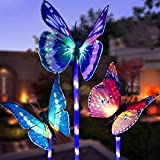 ZJ Exquisit Bunte helle Schmetterling Solar Bodenstecker Licht Rasenlicht Solarlicht Schmetterling Licht Solarlicht (3 Stück) Mode