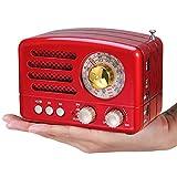 PRUNUS J-160 Retro Radio mit Bluetooth,Kleines Tragbares AM FM SW Radio,Unterstützt TF-Karte/Aux/USB-MP3 Lautsprecher (Rot)