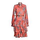 Dresses Hübsche Kleid Kleider Damen Frauen Bedruckte Kleider Langarm Fliege Kuchen Kleid Weibliche Rüschen Plissee Mode