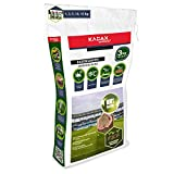 KADAX Sportrasen, Spielrasen, Saatgutmischung, Rasensamen, Grassamen, Rasensaat, Rasenmischung, wirksames Saatgut, Gras, Rasensaatmischung (3 kg)