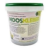 Mooskleber   Zähflüssiger Bastelkleber zum Gestalten von Moosbildern und Mooswänden   Nach dem Trocknen grün   1kg