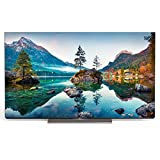 METZ Blue 65MOC9001 65 Zoll Smart OLED UHD Fernseher (164 cm) mit Android TV (Triple Tuner, Android 10.0, Netflix, YouTube, Prime Video, Disney+, HDMI, CI-Slot, USB, digital Audio)