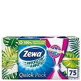Zewa Wisch und Weg Zewa WischundWeg Küchenrolle in der praktischen Softbox, 1 x 75 Blatt, 1 Stück