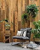 Barnwoodweb Wandholz Montreal Natural 0,8m2 Wandbekleidung aus Altholz mit 3D-Effek