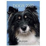 Draeger Paris - Kleiner Wandkalender Hunde - 2022