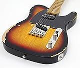 ESP LTD TE Serie te-254E-Gitarre Guitar Only Left-Handed