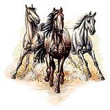dekodino® Wandtattoo Kinderzimmer Pferde 3er Set im coolen Stil Pferdekopf Dek
