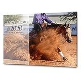 Pferdeschild Boxenschild mit Wunschtext und Bild | Alu Verbundplatte/AluDibond | 30x20 cm | sofort personalisierbar | inkl. Brandzeichen & M