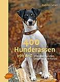 400 Hunderassen von A–Z: Alles über Aussehen, Charakter und Verhalten