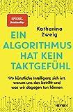 Ein Algorithmus hat kein Taktgefühl: Wo künstliche Intelligenz sich irrt, warum uns das betrifft und was wir dagegen tun kö
