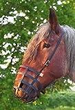 Heavy Horse Parts Fressbremse Strong Schwere Warmblüter und Kaltblüter ohne Kehlriemen und Verstärkter Bodenplatte