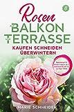 Rosen auf Balkon und Terrasse - Kaufen Schneiden Überwintern: Traumhafte Rosen auch als Anfänger mit 15 Extra-Tipp