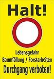 Absperr-Plane Absperr-Banner - Halt - Lebensgefahr Baum-fällung Forst-Arbeiten - 450x650mm mit Ösen – P00001-004-C - stabile PVC Werbe-Plane Werbe-Banner +++ in 4 Varianten erhältlich