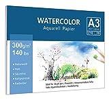 Premium Aquarellpapier (A3, 300 g/m², 10 Einzelne Blätter), Kaltgepresst Glatt Watercolor Paper, Matt Aquarell Papier für Aquarellmalerei Wasserfarben Gouache Acryl & Aquarelltechnik