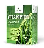 AVARA Champion - Rasensamen - trockenheitsresistent - geeignet für alle Standorte & Bodenarten - 1kg