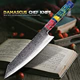 Küchenmesser Koch Nakiri Messer 67 Schichten japanische Damaszener Damaskus Kochmesser 8 Zoll Damaskus Küchenmesser Verfestigte Holz HD Scharf