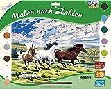 Mammut Spiel & Geschenk 109026 - Malen nach Zahlen - Pferde im Galopp, ca. 40 x 30 cm