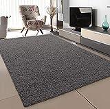 SANAT Teppich Wohnzimmer - Grau Hochflor Langflor Teppiche Modern, Größe: 120x170