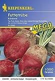 Futterrüben Eckdorot, Inhalt: 1kg reicht für ca.: 500 m², Typ: Rote Walze, eine walzenförmige Runkelrübe die reichlich Masse bring