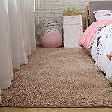 NYYHGS Super weicher und Flauschiger Plüschteppich Großer Wohnzimmerbereich Teppich Geeignet für Heimtextilien Hellbraun 80X200Cm