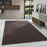 Carpetsale24 Kurzflor Teppich Flachgewebe Schlingenteppich Kettelteppich Meliert Braun, Maße:240 cm x 340 cm