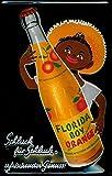 Florida Boy Orange Blechschild Schild Blech Metall Metal Tin Sign 20 x 30 cm
