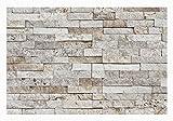 1 Muster W-012 Wanddesign Wandverblender Travertin Steinwand Wandverkleidung Naturstein Fliesen Lager Verkauf Stein-Mosaik Herne NRW