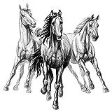dekodino® Wandtattoo Kinderzimmer Pferde 3er Set im Zeichenstil Pferdekopf Dek