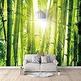 FVGKYS Wandbild 3D B Selbstklebend Poster Tapete Für Tv Sofa Hintergrund Wohnzimmer Schlafzimmer Badezimmer Einfache Wohnkulturenutzerdefinierte Wandgemälde 250x175cm Sonnenschein Grüner Bambus Selbst