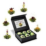 Creano 6 Teeblumen Geschenkbox grüner Tee, in edeler Magnetbox mit Siberberprägung, 6 verschiedene Sorten, Geschank zu Ostern