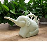 ROERDTRY Kleine Gartengießkanne aus Kunststoff, Blumengießkanne mit langem Auslauf, für Innen und Außen, Haus, Garten, Blumen, Zimmerpflanzen, Bewässerung Elefant