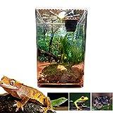 longrep Insekten Terrarium, Reptilienzucht Box Clear Acryl Reptile Terrarium Fütterungsbox Für Geckos Spinnen Wetbox Leopardengecko Mini Aquarium Komp