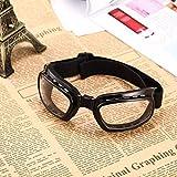 Sairis Faltbare Vintage Motorradbrille Winddichte Brille Skibrille Snowboardbrille Off Road Racing Staubdichte Brille (Farbe: schwarzer Rahmen und klare Gläser)