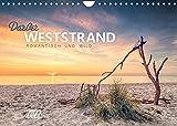 Darßer Weststrand (Wandkalender 2022 DIN A4 quer)